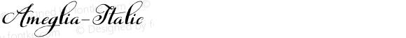 Ameglia-Italic ☞ Version 1.000 2013 initial release;com.myfonts.eurotypo.ameglia.italic.wfkit2.451o