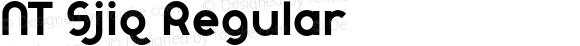 NT Sjiq Regular Version 1.00 2013;com.myfonts.novotypo.nt-sjiq.regular.wfkit2.3V66