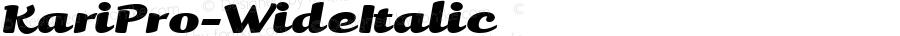 KariPro-WideItalic ☞ Version 1.000 2005 initial release;com.myfonts.easy.positype.kari-pro.wide-italic.wfkit2.version.3yet