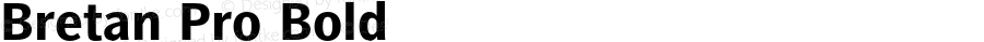 Bretan Pro Bold Version 1.000;PS 001.001;hotconv 1.0.56