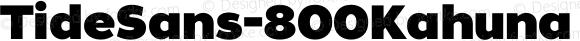 TideSans-800Kahuna ☞ Version 1.000;PS 005.000;hotconv 1.0.70;makeotf.lib2.5.58329;com.myfonts.kyle-wayne-benson.tide-sans.kahuna.wfkit2.44Us