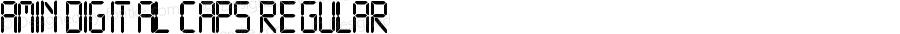 Amin Digital CAPS Regular Version 1.00 January 17, 2015, initial release