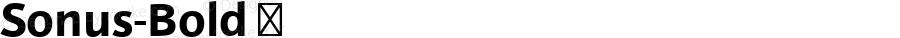 Sonus-Bold ☞ Version 001.001 ;com.myfonts.easy.hoftype.sonus.bold.wfkit2.version.3EjP