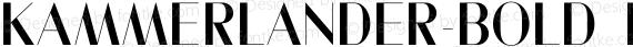 Kammerlander-Bold ☞ preview image