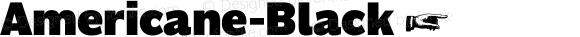 Americane-Black ☞ Version 1.000;com.myfonts.easy.hvdfonts.americane.black.wfkit2.version.4mL7