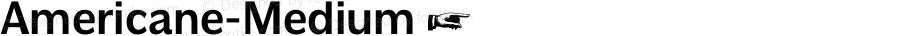 Americane-Medium ☞ Version 1.000;com.myfonts.easy.hvdfonts.americane.medium.wfkit2.version.4mL5