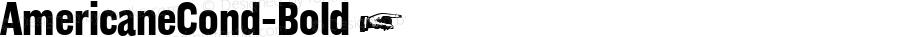 AmericaneCond-Bold ☞ Version 1.000;com.myfonts.easy.hvdfonts.americane-condensed.bold.wfkit2.version.4mLr