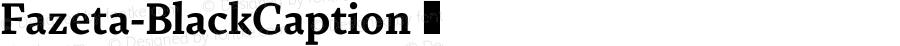 Fazeta-BlackCaption ☞ 001.000;com.myfonts.easy.adtypo.fazeta.caption-black.wfkit2.version.4kY7