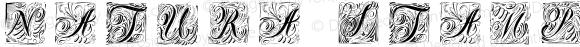 Natura Stamps Regular Version 1.000;PS 001.000;hotconv 1.0.70;makeotf.lib2.5.58329