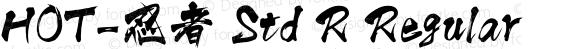 HOT-忍者 Std R Regular preview image