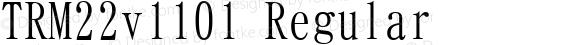 TRM22v1101 Regular Version 1.101