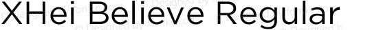 XHei Believe Regular preview image