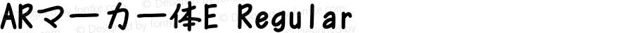 ARマーカー体E Regular Version 2.15