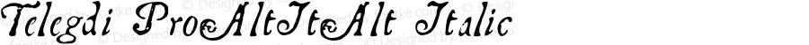 Telegdi Pro AltIt Alt Italic Version 001.001