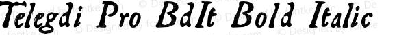 Telegdi Pro BdIt Bold Italic Version 001.001