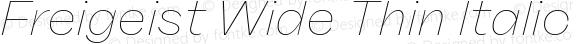 Freigeist Wide Thin Italic