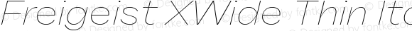 Freigeist XWide Thin Italic