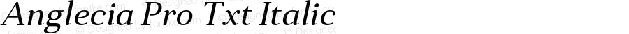 Anglecia Pro Txt Italic Version 001.000
