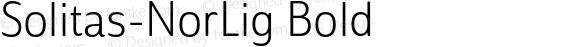 Solitas-NorLig Bold 1.000;com.myfonts.easy.insigne.solitas.nor-light.wfkit2.version.4oew