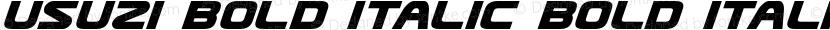 Usuzi Bold Italic Bold Italic Preview Image