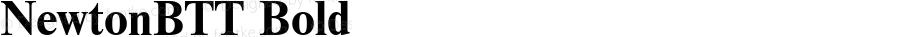 NewtonBTT Bold TrueType Maker version 1.10.00