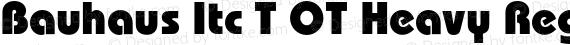 Bauhaus Itc T OT Heavy Regular preview image