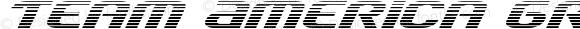 Team America Gradient Regular Version 1.1; 2015