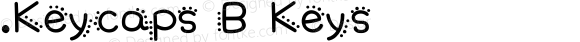 .Keycaps B Keys