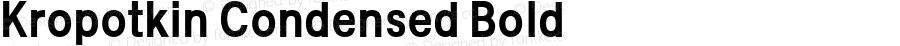 Kropotkin Condensed Bold Version 1.001