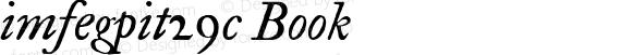 imfegpit29c Book