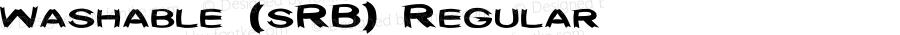 Washable (sRB) Regular 1.01