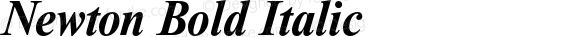 Newton Bold Italic
