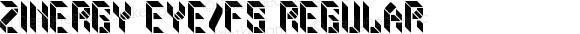 zinergy eYe/FS Regular Version 1.0