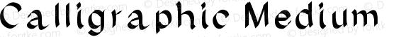 Calligraphic Medium Version 001.000