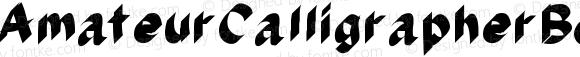 AmateurCalligrapherBold Bold Version 001.000