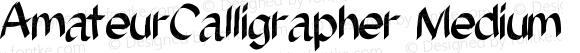AmateurCalligrapher Medium Version 001.000