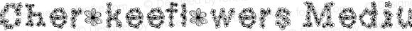 Cherokeeflowers Medium