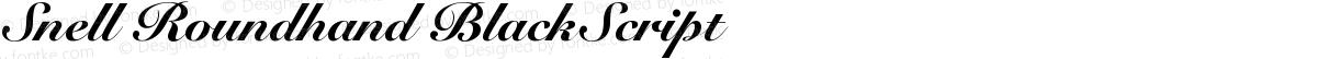 Snell Roundhand BlackScript