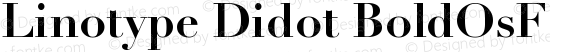 Linotype Didot BoldOsF preview image