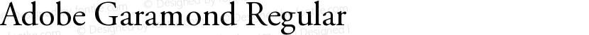 Adobe Garamond Regular Preview Image
