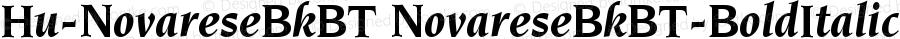 Hu-NovareseBkBT NovareseBkBT-BoldItalic Version 001.000