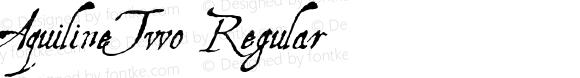 AquilineTwo Regular