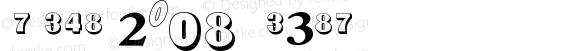 NumericsP08 Medium Version 001.001