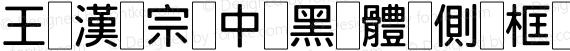 王漢宗中黑體側框 Regular preview image