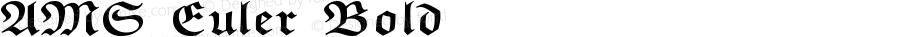 AMS Euler Bold Version 003.000