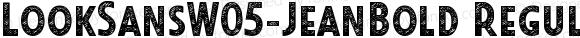 LookSansW05-JeanBold
