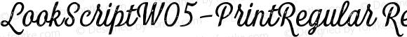 LookScriptW05-PrintRegular