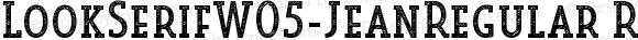 LookSerifW05-JeanRegular