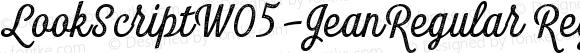 LookScriptW05-JeanRegular