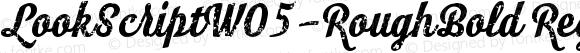 LookScriptW05-RoughBold